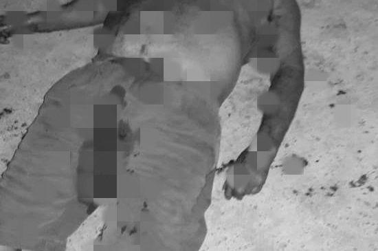 Violência: Idoso é vitima de latrocínio na zona rural de Luzilândia