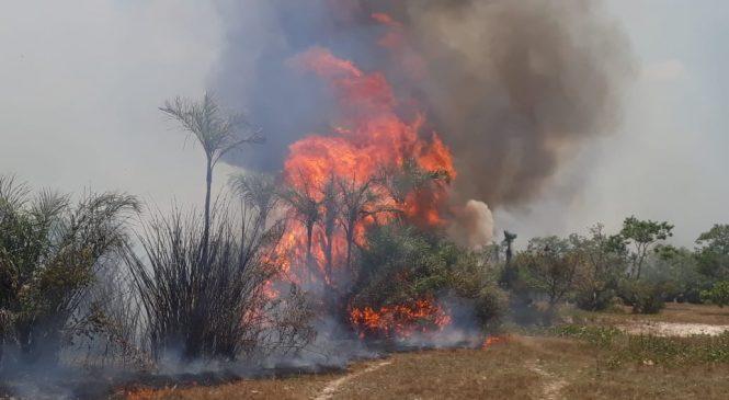 Barras tem entre 15 e 20 chamadas por dia para conter focos de incêndio